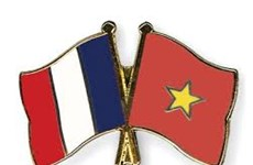 Vietnam-France friendship assoc. convenes congress