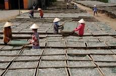 Ca Mau to raise villagers' incomes