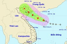 Teleconference discusses coping with typhoon Mirinae