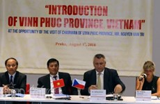 Vinh Phuc seeks partnerships with Czech Republic