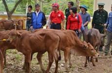 US company helps Thanh Hoa locals improve livelihoods