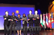Vietnam chairs ASEAN Day celebration in Argentina