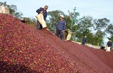 Coffee firms want State help