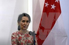 Myanmar state counselor calls for solidarity for long-lasting peace