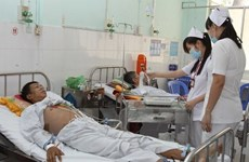 Mekong Delta faces urgent lack of doctors