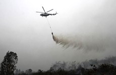 Indonesia warns of haze from forest fires
