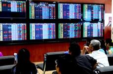 Vinamilk fall extends stock market gloom