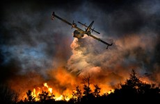 Indonesia intensifies efforts to combat forest fires