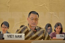 VN integrates human rights education into community activities