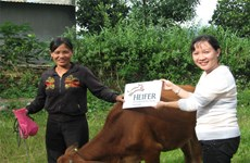 Tien Giang: Disadvantaged people supported to transform production