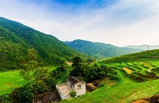 Khe Van Waterfall: serenity and adventure