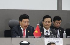 Solidarity promotes NAM strength: Deputy PM