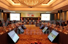 Vietnam, Singapore foster economic connectivity