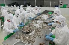 US keeps duties on Vietnamese frozen shrimp