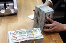 Reference exchange rate for VND/USD rises by 12 VND