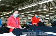 FTA enforcement opens up new prospects for Vietnam-EAEU trade