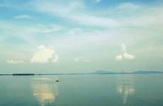 Tay Ninh moves wild monkeys to National Park