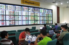 Vietnamese shares volatile on large-cap stocks