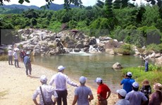Eecotourism site in Binh Dinh draws tourists