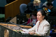 Vietnam calls for continued resources to development
