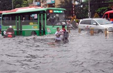 Vietnam makes efforts to minimize natural disaster risks