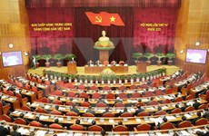 Party Central Committee looks into socio-economic affairs