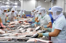 Annual Tra fish exports expected to increase 5 percent