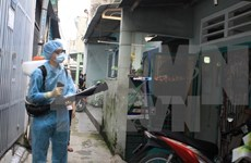 Two more Zika virus cases reported in HCM City