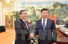 Vietnam treasures ties with China: Politburo member