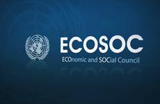 Vietnam's hallmark in UN Economic and Social Council