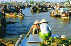 River tours fall without Mekong Delta flood rains