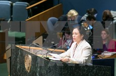 Vietnam affirms commitment to promoting human rights