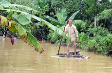 Two working groups formed to cope with flooding in central region