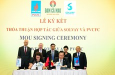 Vietnamese, Belgian firms cooperate in producing high-quality urea