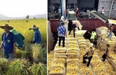 Thai military tightens monitoring over rice mills