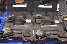 HCM City confiscates illegally-imported guns