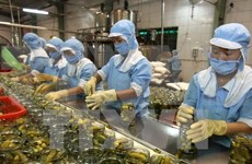 EU pledges to cooperate in food safety with HCM City