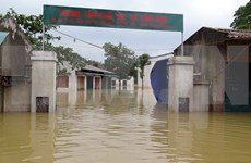 Consecutive floods devastate central provinces