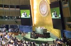 Vietnamese ambassador elected to UN agency