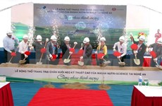 Nghe An to have new high-tech pig farm