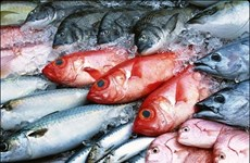 Government to pay for Formosa-polluted frozen fish