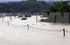 Flooding takes 15 lives in central, Central Highlands