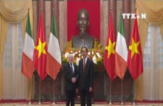 Vietnam, Ireland to deepen multi-faceted cooperation