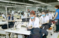 Local textile, garment businesses face difficulties in 2017