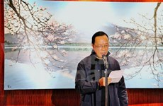 Exhibition of Vietnamese painter begins in Japan