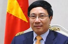 Overseas Vietnamese urged to engage in national development