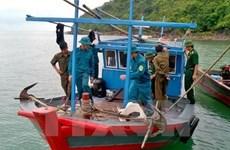 Quang Ngai promotes off-shore fishing