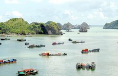 Hai Phong strives to become tourism centre