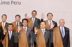 President addresses first plenum of APEC Economic leaders' meeting