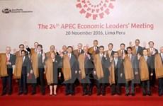 Hosting APEC Year 2017 – centre of Vietnam's external activities